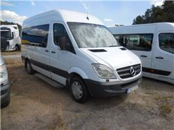 Mercedes-Benz Sprtinter 315 8 pass/Lift -09
