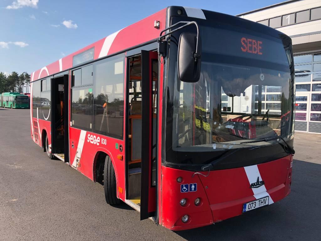 MAZ 206, Linnabussid, Transport