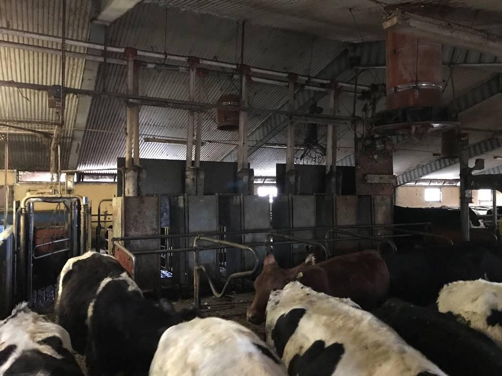 [Other] De Laval Foderautomater 6st, Utfodringsutrustning, Lantbruk