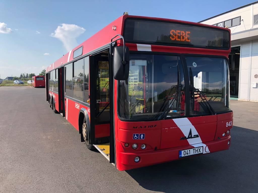 MAZ 107, Linnabussid, Transport