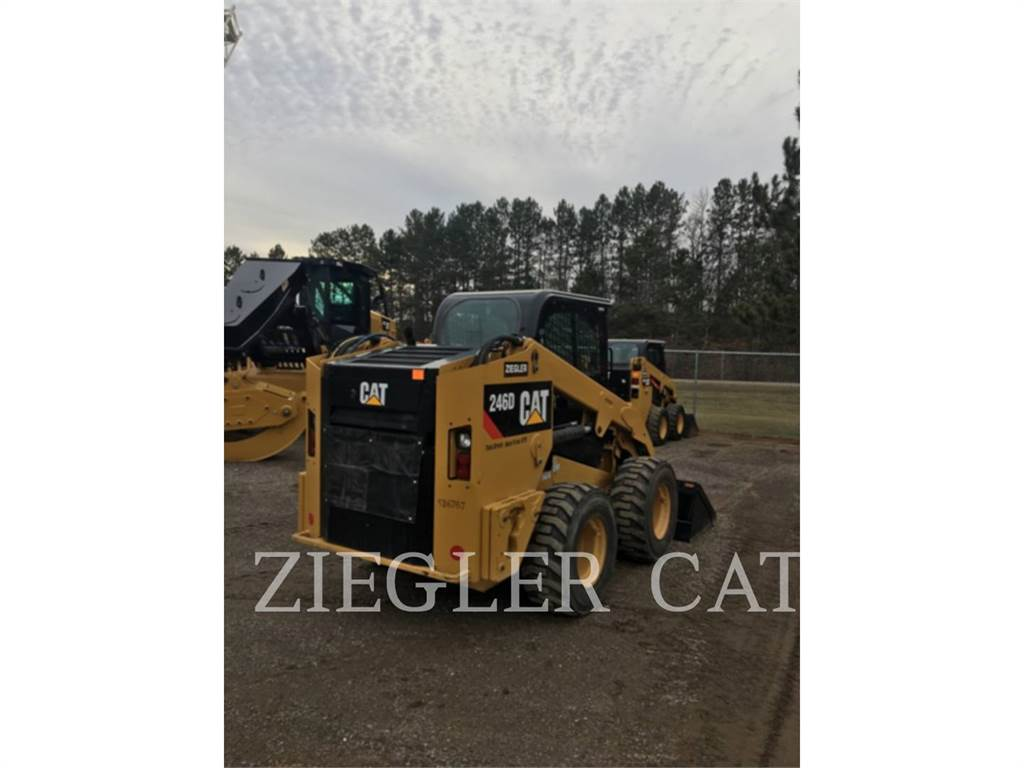 Caterpillar 246DW, Skid Steer Loaders, Construction