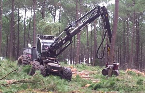 Logset 10H, Harvesters, Forestry