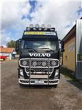 Volvo FH13, 2010, Tovornjaki z žerjavom