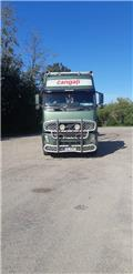 Volvo FH16 610, 2004, Log trucks