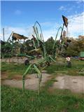 Krone Swadro 807, 2012, Граблі і сінозворушувачі