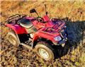 Loncin 200, 2006, ATV
