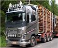 Volvo FH16, 2013, Kamioni za drva Šticari