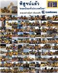 Liugong CLG 842, Wielladers