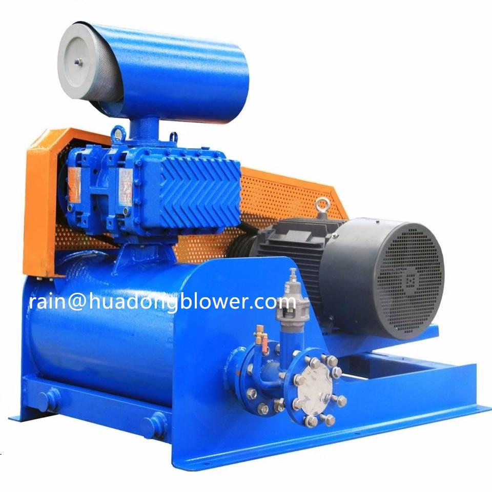 [Other] Shandong Huadong Roots Blower & Vacuum pump HG ser