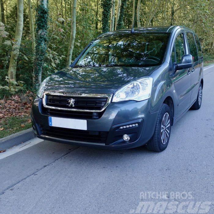 Peugeot Partner P.Tepee 1.6BlueHDI Dangel Trek Plus 4x2 10