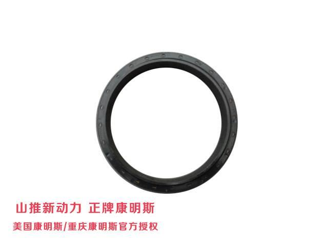 Cummins QSC8.3 series Oil sealing 3925343