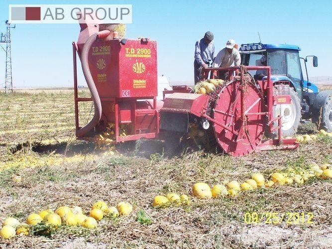 SMS Selmaksan Kürbiserntemaschine/Pumpkin Harvester/Ko