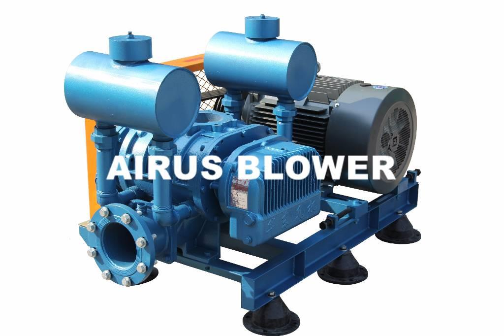 [Other] ShandongHuadong AIRUS roots vacuum pump for vacuum