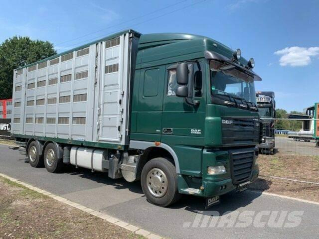 DAF XF105/410 Spacecup Menke 4 Stock