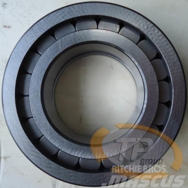 Rexroth R909831574 Zylinder Rollenlager A4VG250