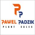 PP PLANT SALES PAWEŁ PADZIK
