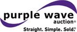 Purple Wave Auction